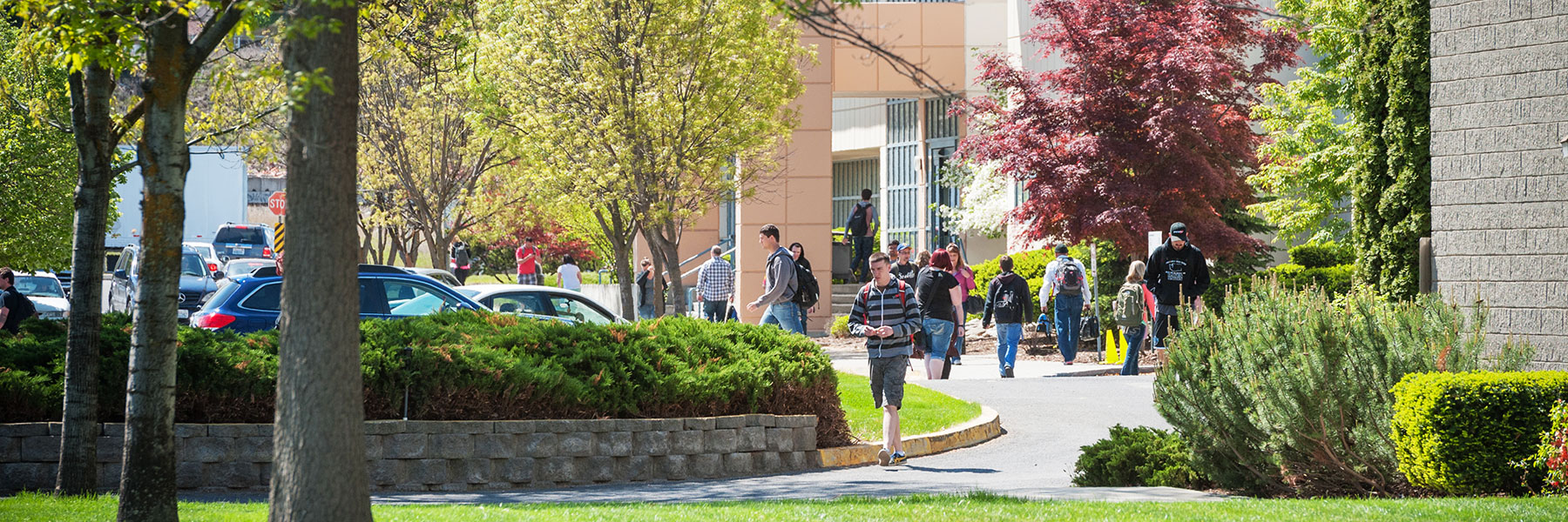 Sunny afternoon on campus with students walking around