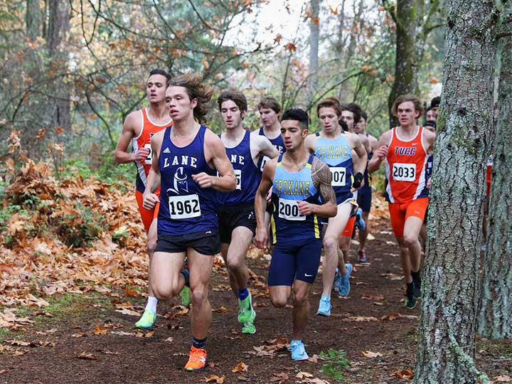 Men's cross country team running on dirt path next to tree